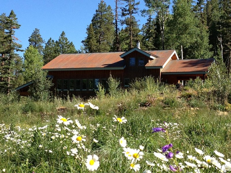 Secluded Modern Mountain Bungalow - 2 Miles To Ski - Dogs Welcome, holiday rental in Rico