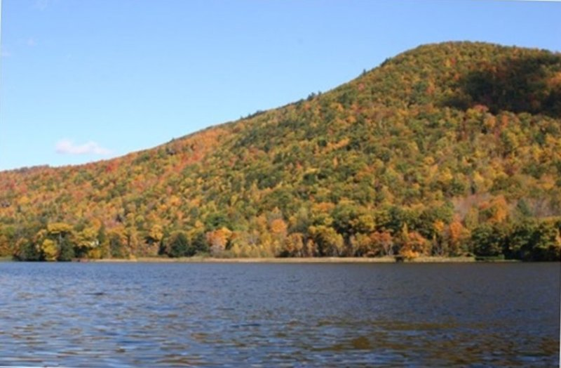 Lakeview: Comfortable Lakefront Cabin between Okemo & Killington, holiday rental in Plymouth