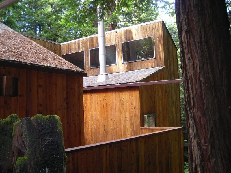 The Redwood House in the Redwoods, vacation rental in The Sea Ranch