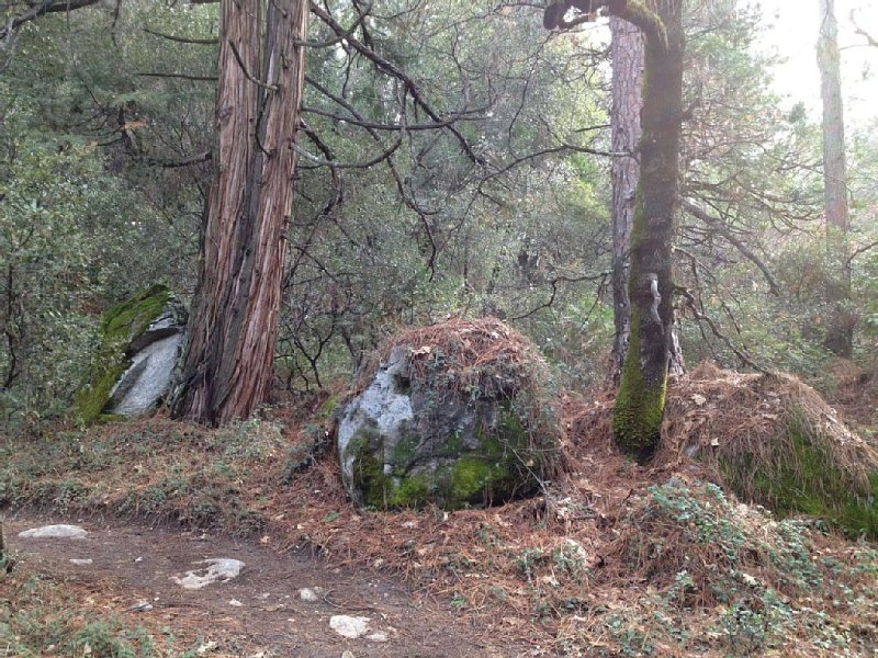 A glimps of Hirschman's Trail.
