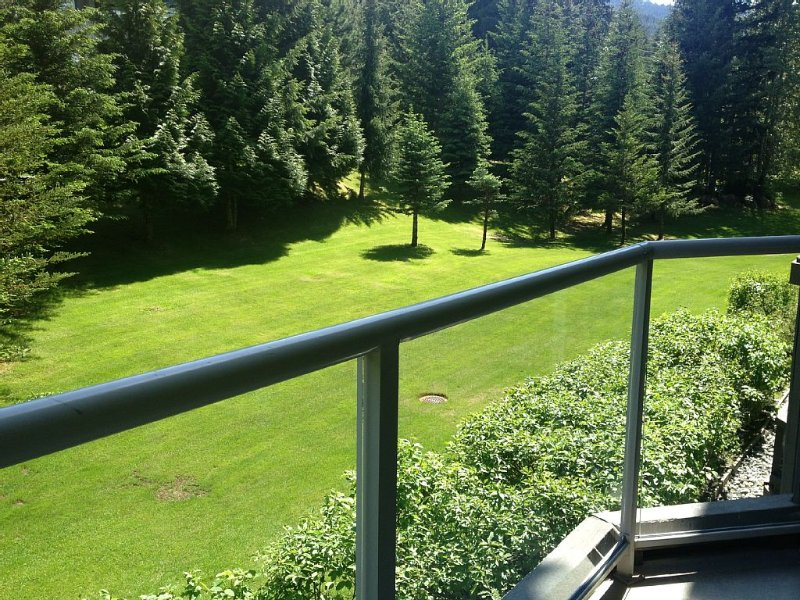 Best slopeside condo-ski in ski out. Quiet side of mountain with tree views!, vacation rental in Whistler