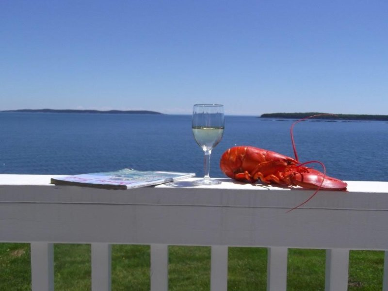 Lobster w/ a view