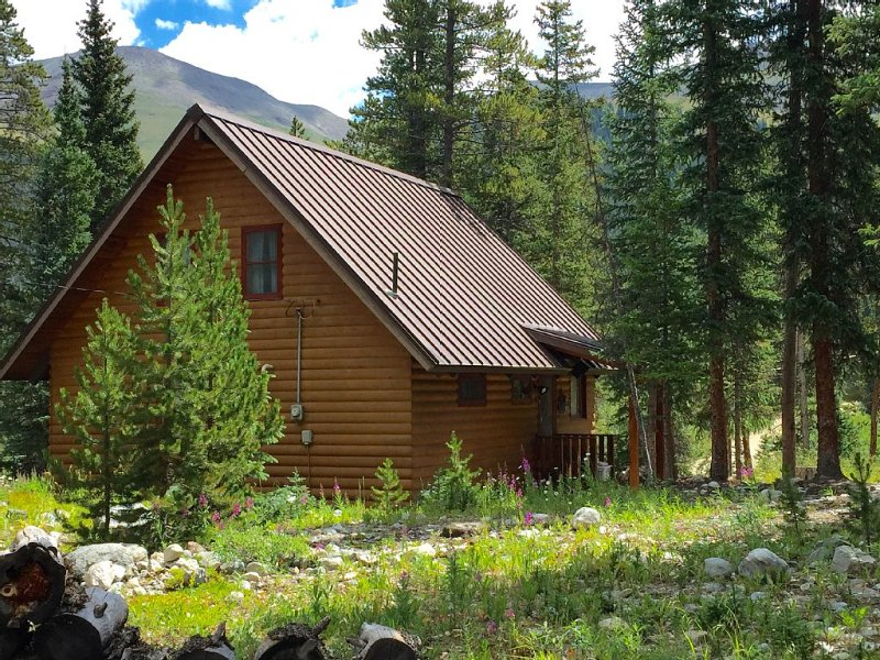 The perfect family friendly cabin in the woods, minutes to downtown Breckenridge, vacation rental in Breckenridge