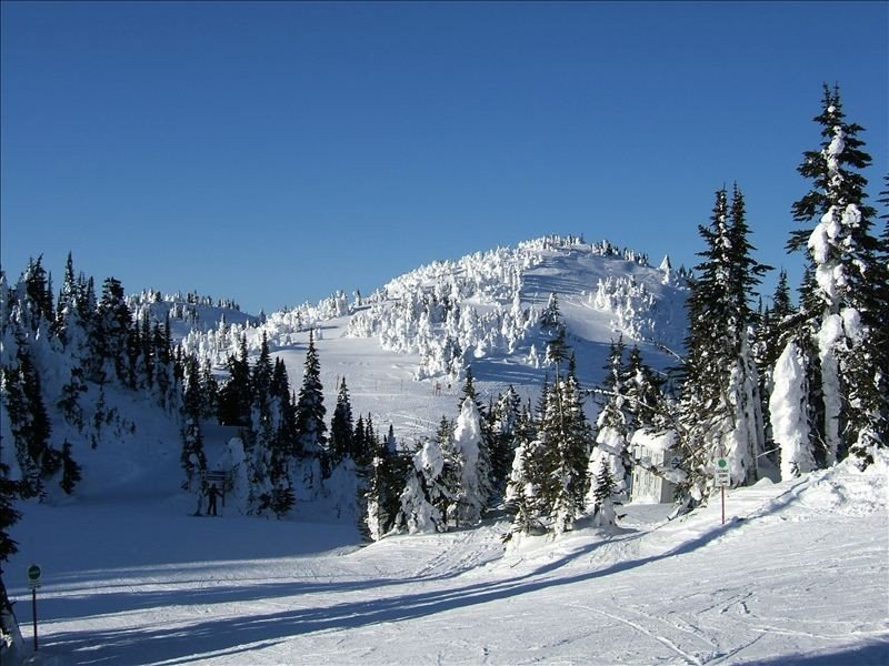 The Best Ski in/Ski Out Location with Private Hot Tub & Bbq, holiday rental in Sun Peaks