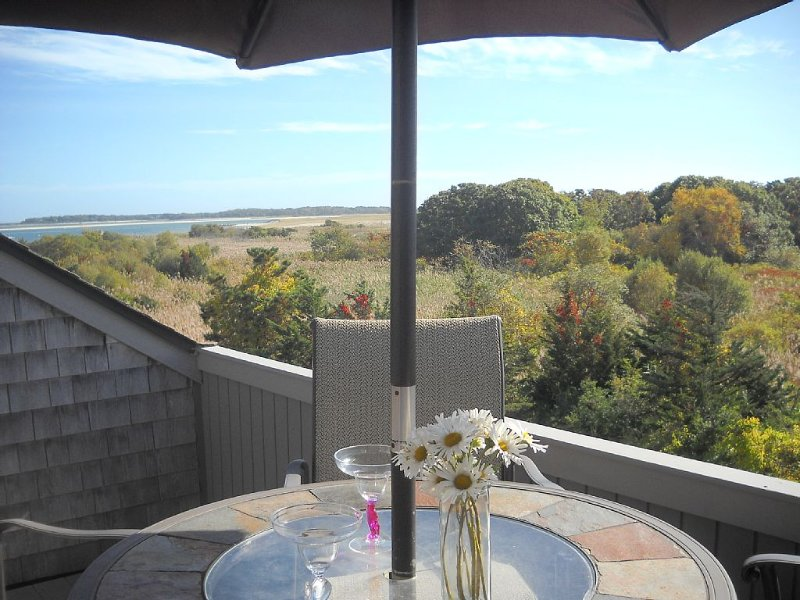 Life's A Beach... With Options, holiday rental in Hyannis