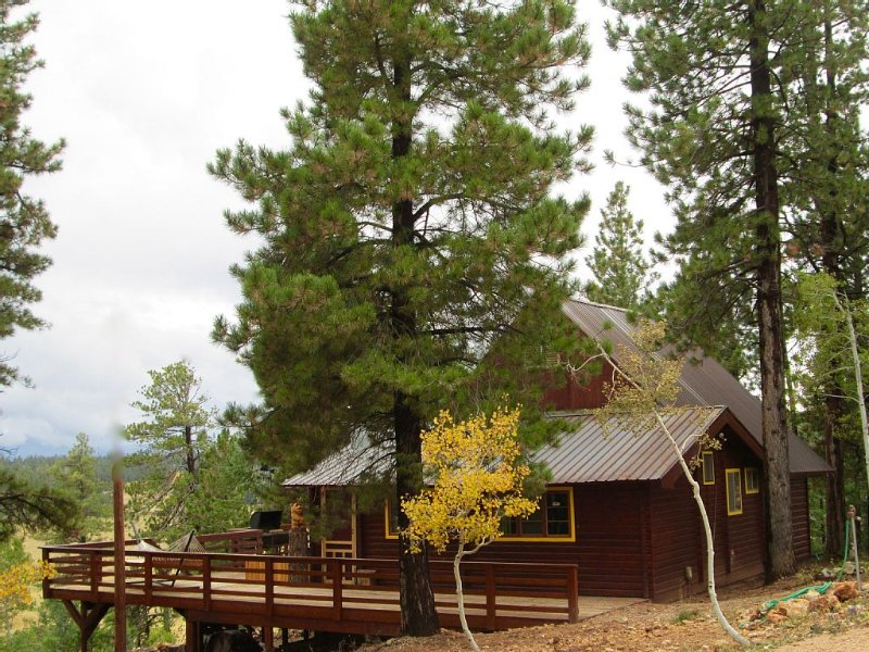 Family & Pet friendly! THAT Cabin with an amazing view!, alquiler vacacional en Duck Creek Village