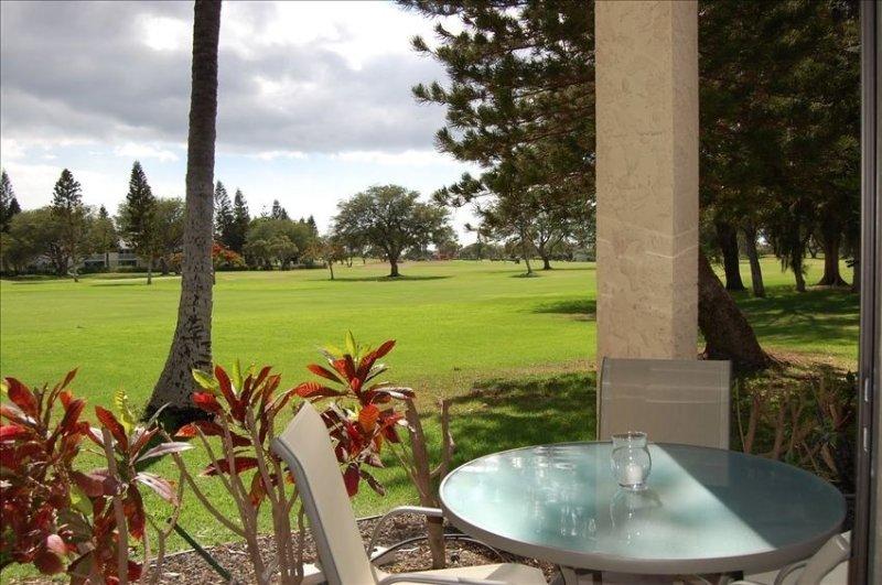 New lower rates! Best Value! Beautiful View 2 BR, 2 BA NO STAIRS!, location de vacances à Kohala Coast