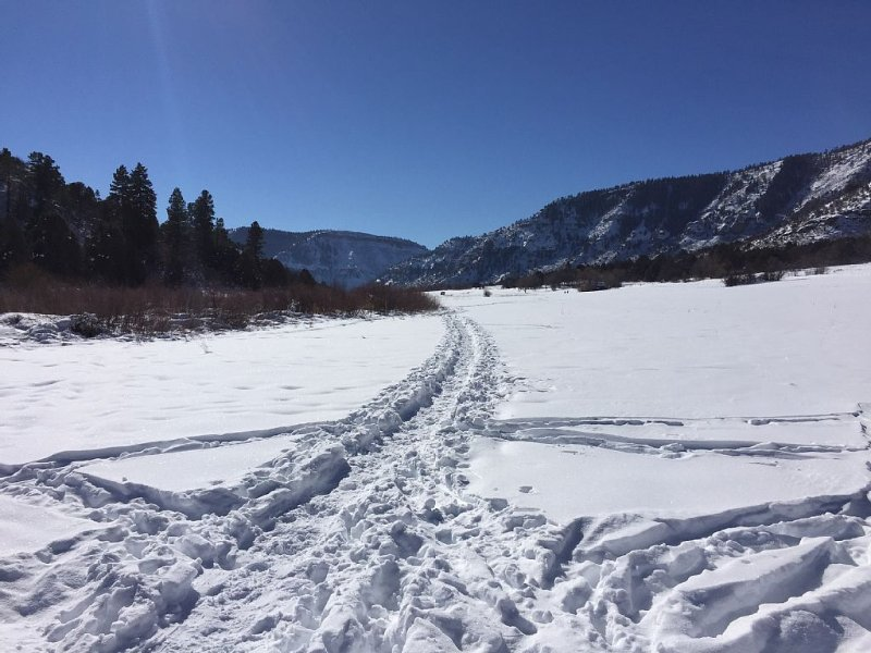 Cross country ski and snowshoe in the meadow across the road.