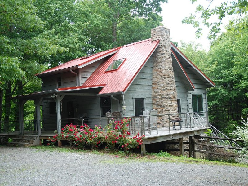 Cabin: 11 acres, tree fort, 1 mile to DuPont, close to Brevard & Hendersonville, Ferienwohnung in Hendersonville