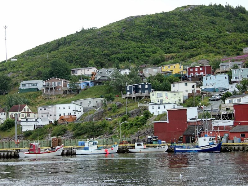 Spectacular and Exceptional St. John's Area Oceanfront Cottage, holiday rental in Witless Bay