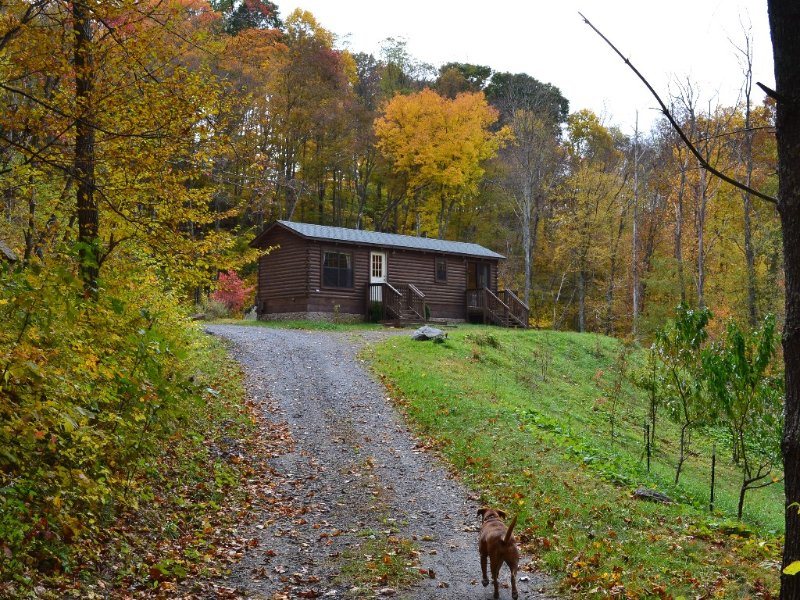 REMOTE REAL LOG CABIN GREAT VIEWS HIKING STARGAZING FIREPIT GRILL NO PETS, alquiler vacacional en Todd