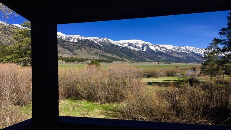 Majestic Teton Views, Serene Location, casa vacanza a Jackson Hole
