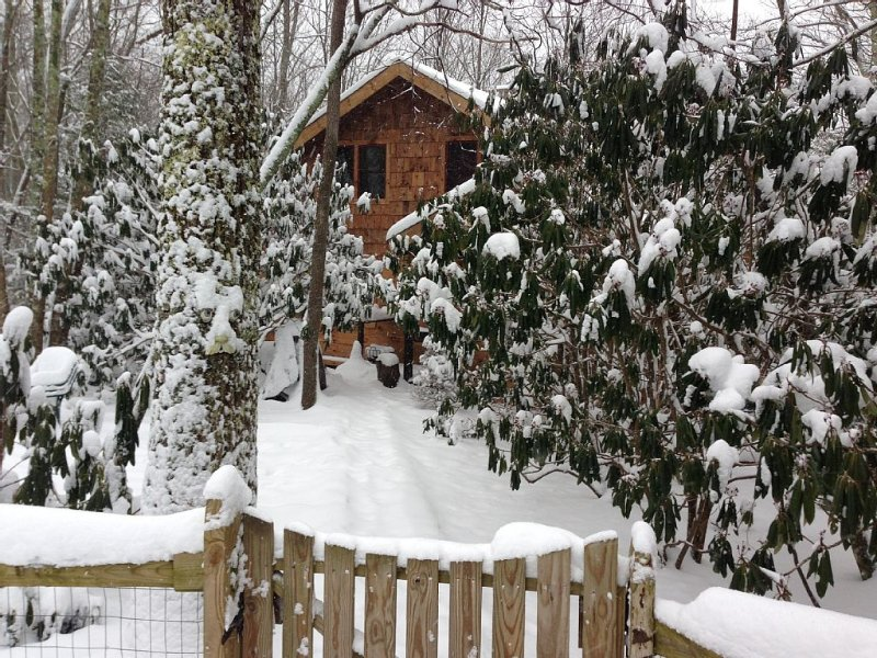 Paws and Relax!  Fenced yard, level entry and HUGE deck, holiday rental in Beech Mountain