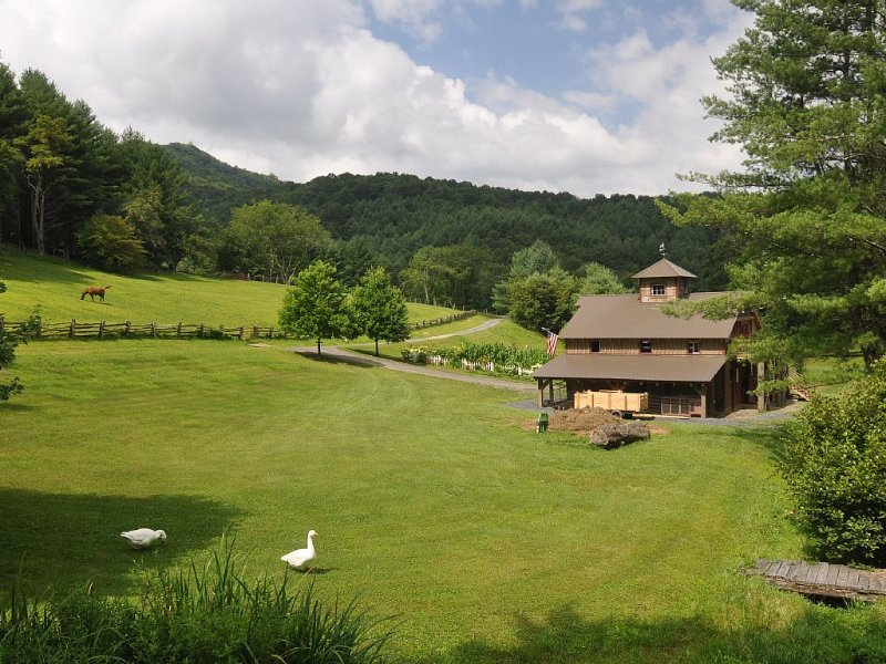 Farm Animals! Quaint Mountain Cabin! 74 Acres of Private Hiking!, vacation rental in Laurel Springs