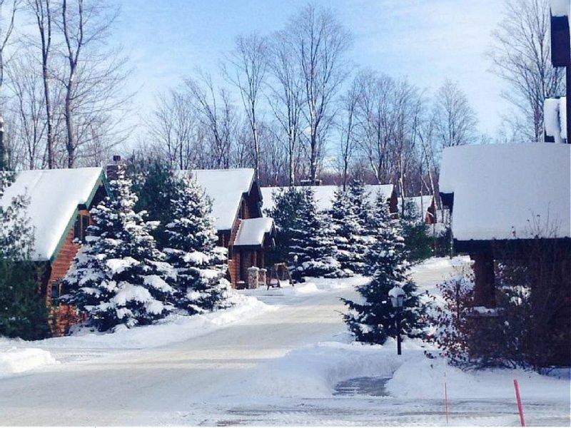 Cozy Mountain Cabin in Boyne Michigan, location de vacances à Boyne Falls