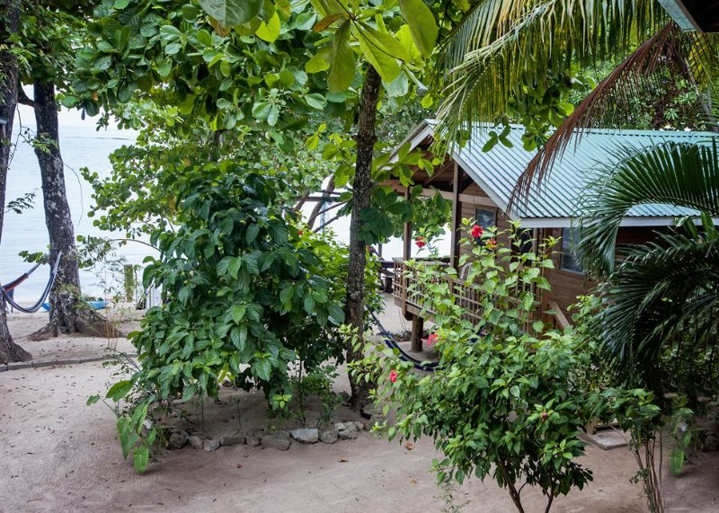 Casita nestled in lush greenery