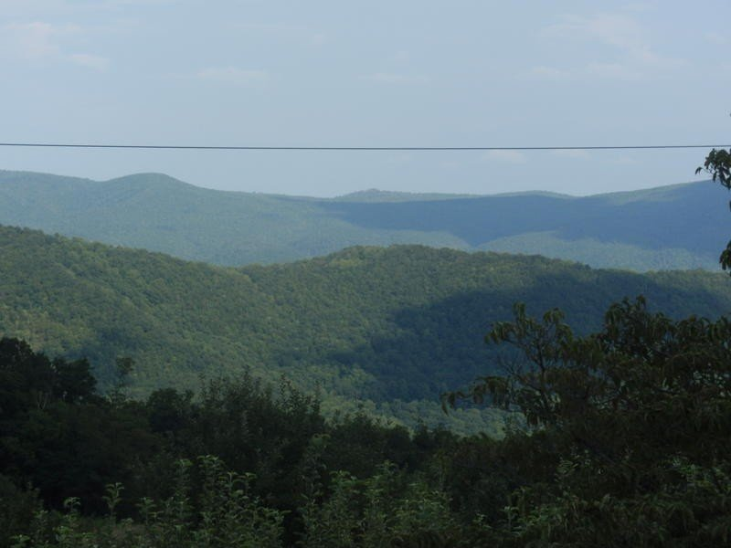 Summer view from deck with long and short range views