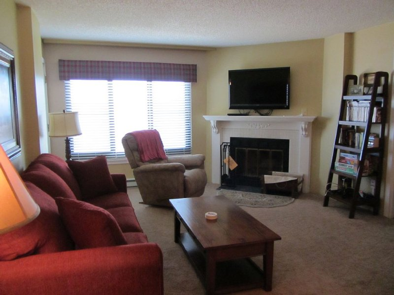 SILVER CREEK, 2 Bedroom, Ski-in Ski-Out, Great Family Condo, location de vacances à Snowshoe