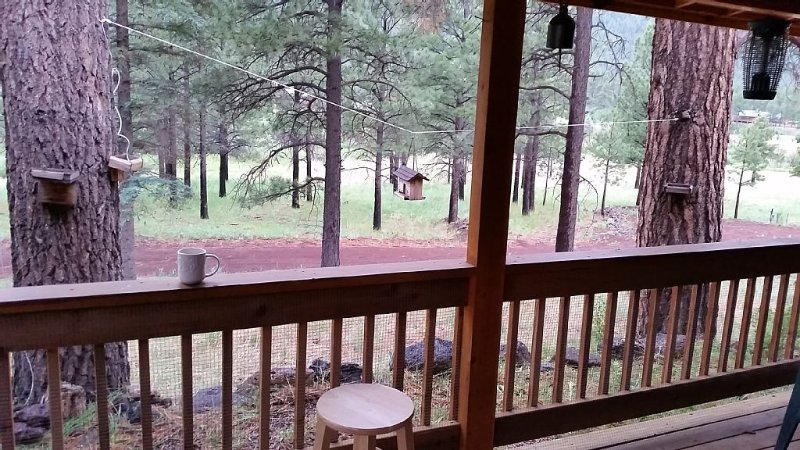 Windes' East Fork Retreat: Private,  Squirrels, Bird Watching, Weekly Rate too!, aluguéis de temporada em Greer