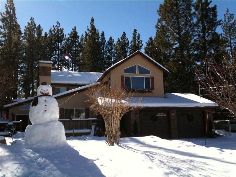 New Luxurious & Family Friendly-Book Your Family Ski Trip Now! Tesla Charging, location de vacances à Big Bear Region