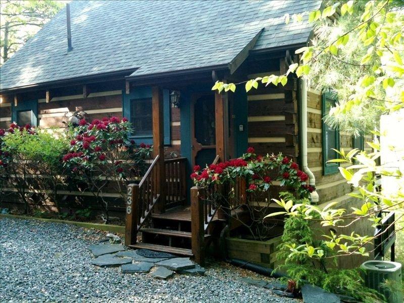 Frog Hollar's Heaven, holiday rental in Deep Gap
