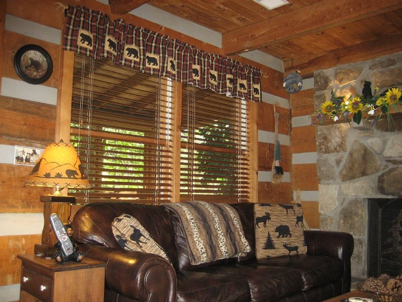 Honey Hive---Now Booking Spring and Summer Nights!!!, casa vacanza a Sevierville