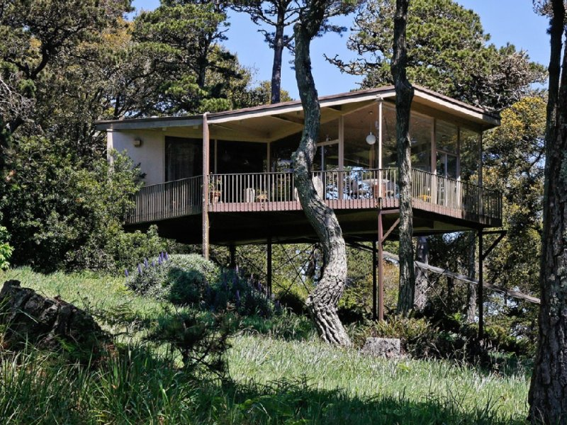 Tree Top Glass Home in the Heart of the National Seashore, holiday rental in Marin County