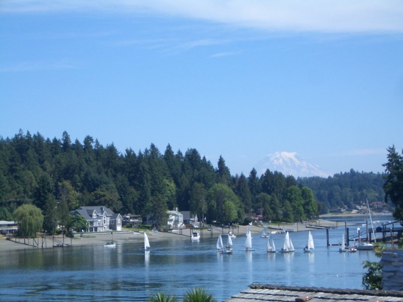 Waterfront and Mt. Rainier view!, holiday rental in Lakebay