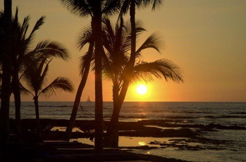 Affordable Luxury * $******* a Night - Golfer's Paradise!, location de vacances à Kamuela