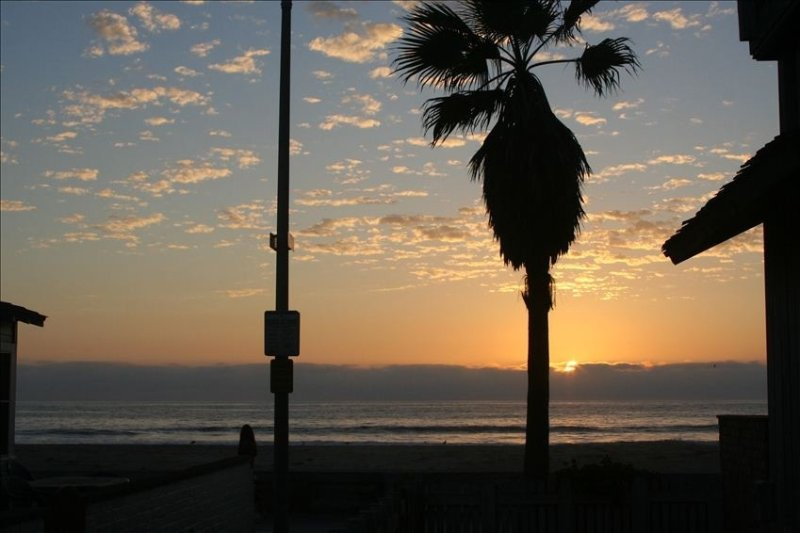 50' from Ocean - Amazing View - Private Cottage - Not a Condo, vacation rental in San Diego