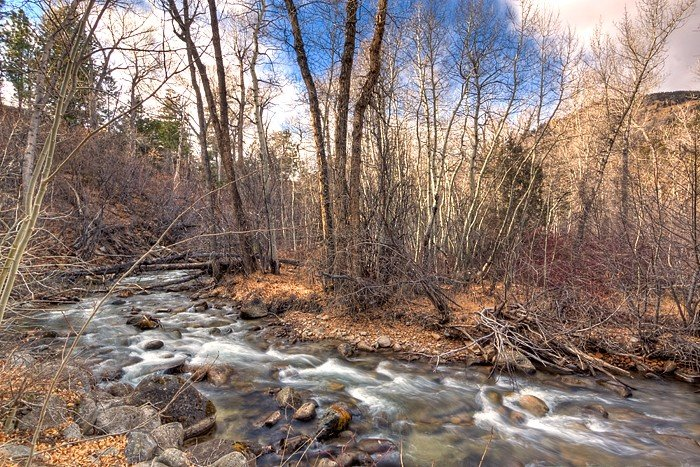 Secluded Creek-side Retreat. Abundant & Comfy Space. Fire pit. Large Hot Tub!, location de vacances à Buena Vista