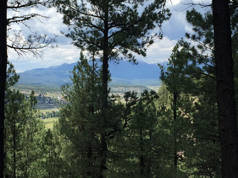 Large Family Friendly Home In The Trees Close To Attractions With Great Views!, holiday rental in Pagosa Springs