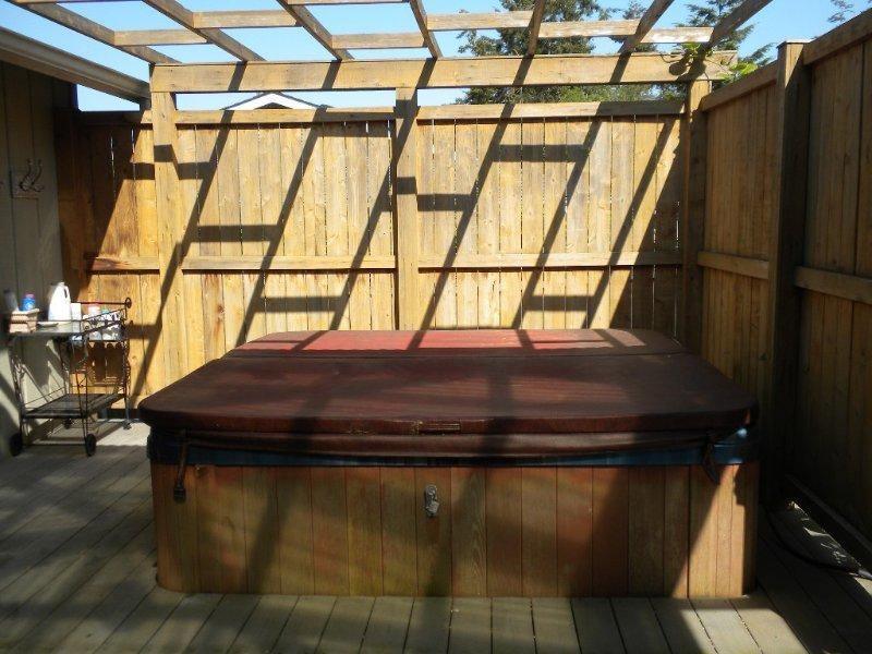 Large hot tub outside master bedroom