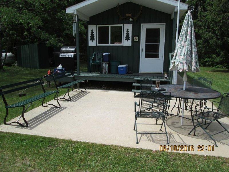 Beautiful Cabin Comfortably Sleeps 8, vacation rental in Seney