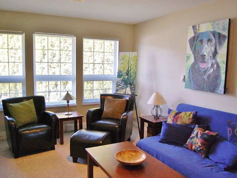 Whistler Ski 35 mins, snowshoe or relax. Pet friendly!, holiday rental in Squamish