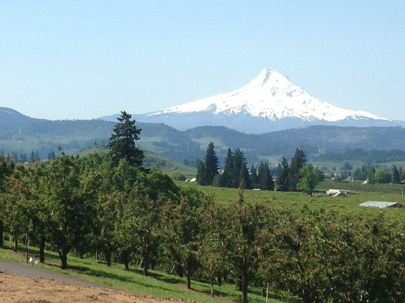 Amazing Mt. Hood and Valley Views at Ziphaus!, vacation rental in Hood River