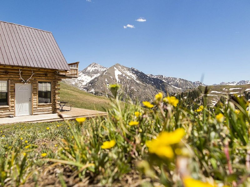 The Bonnie Belle Cabin, a high country modern/rustic cabin, vacation rental in Silverton