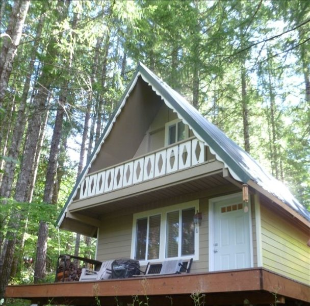 Peaceful Quaint Ski Cabin, Timberline Village Near White Pass, holiday rental in Packwood