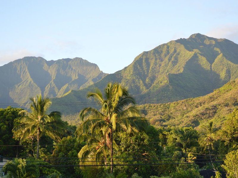 Convenience & Comfort, A minute walk to Hanalei bay and short stroll to town!, holiday rental in Hanalei