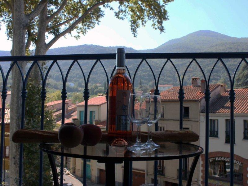 Sun-Filled Apt, Centre Old Ceret, Spectacular Balcony View, location de vacances à Céret