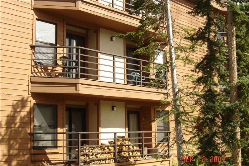 Summit County Condo Rental - Great Location and Amenities!, holiday rental in Silverthorne