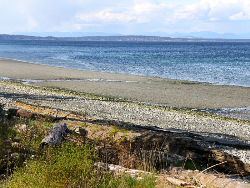 View of sandy beach at low tide with Hornby Island in the background.