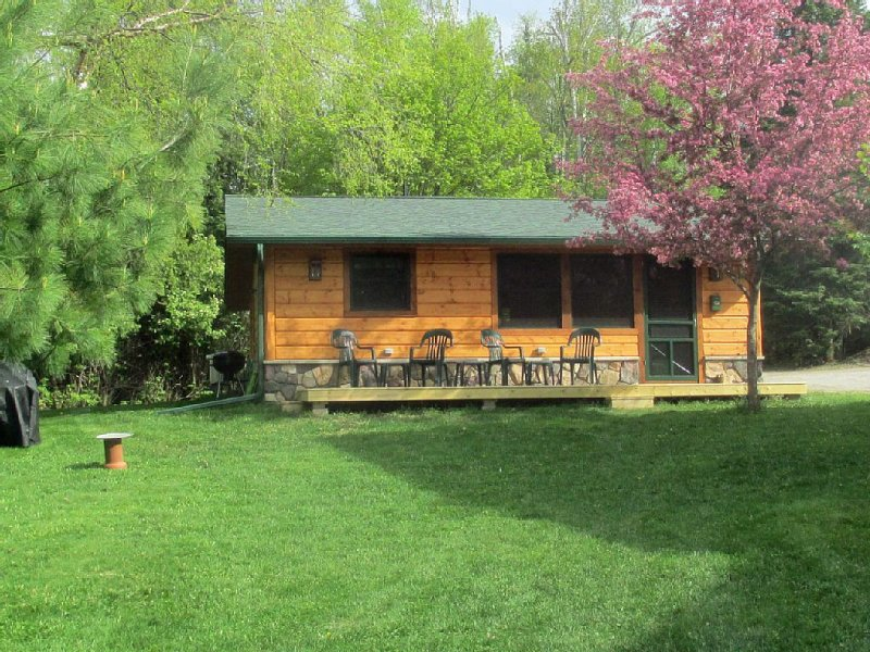 Birch Point Guest Cabin -- Private, Spacious, Quiet, Air Conditioned, holiday rental in Cook