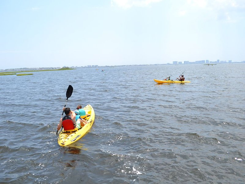Kayaking at The Point in Bayside