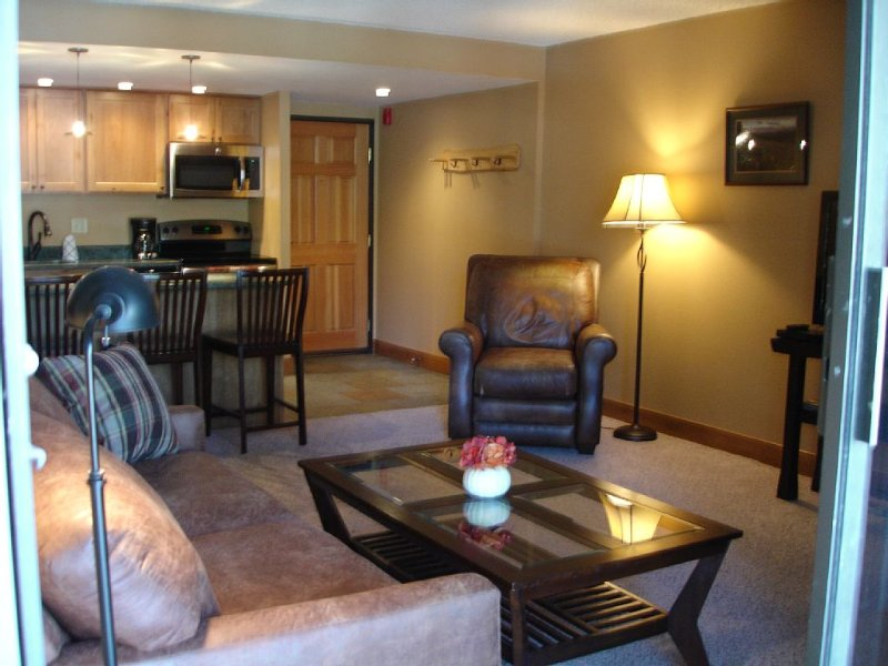 Opening March 20-23! Summer prices available now!, vacation rental in Breckenridge