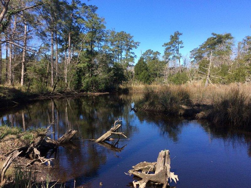 Creekside Cottage On 48 Acres - Pet Friendly- 3 BR 2 BA/Sleeps 6- Next To Nature, location de vacances à Holly Ridge