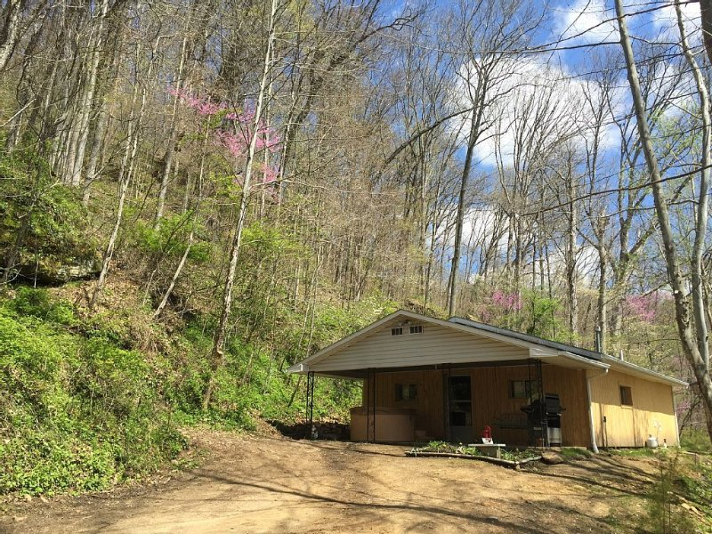 5 Min From The Caves on 21+ Acres, Wi-Fi, Hot Tub, Fire Pit, Pet Friendly, Grill, aluguéis de temporada em South Bloomingville