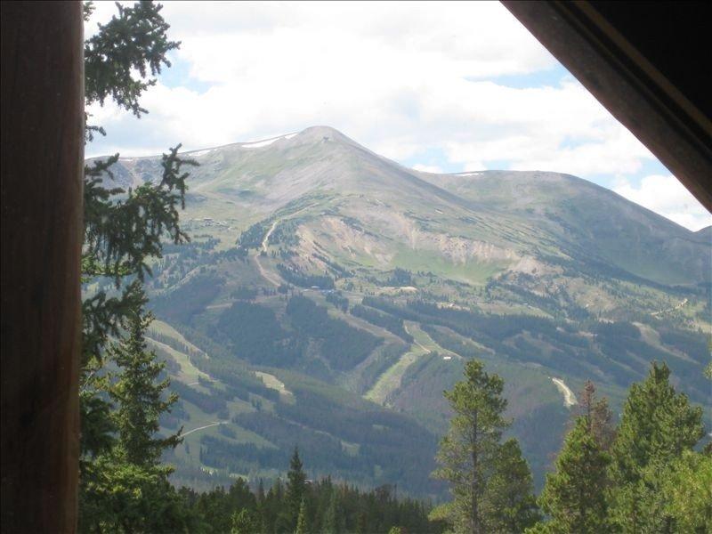 Magnifique vue estivale sur le pic 8 des pistes de ski