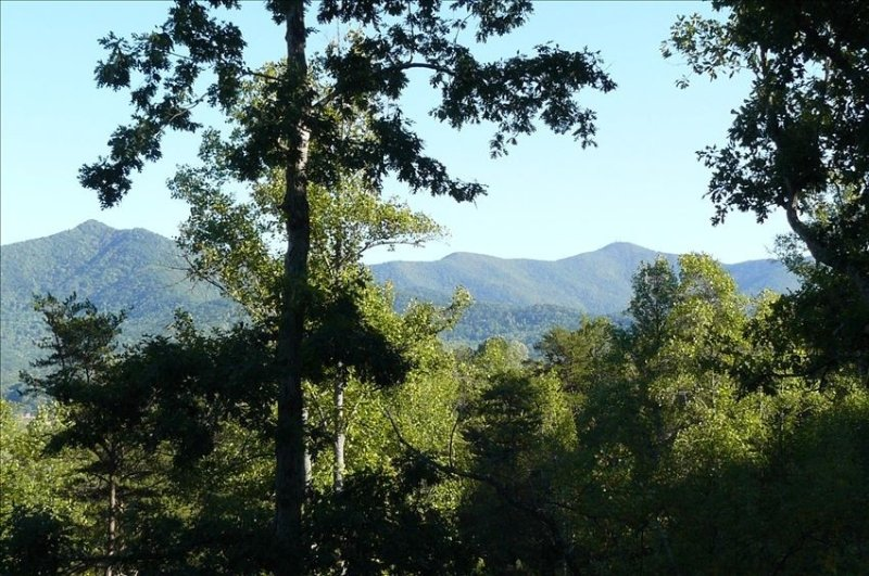 Newer Cabin with Mountain Views, Near Lakes, Golf, aluguéis de temporada em Warne
