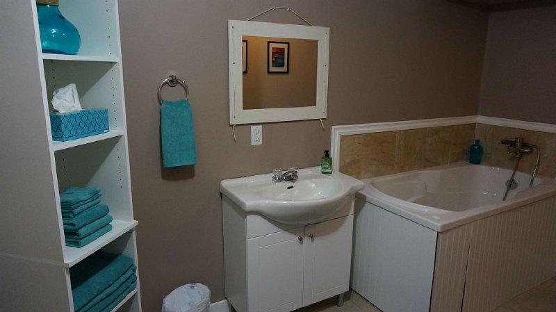 basement ensuite bathroom with jaccuzzi tub